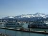 Seward_harbour_5